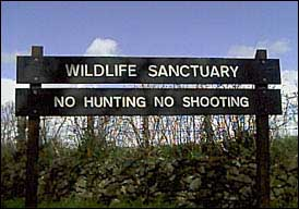 wildlife sanctuary / no hunting sign